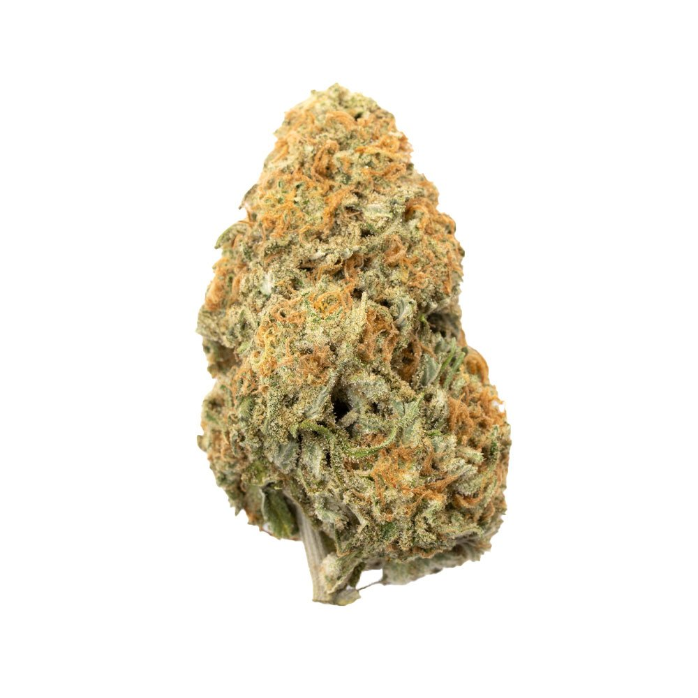 Lemon Drop | Hybrid