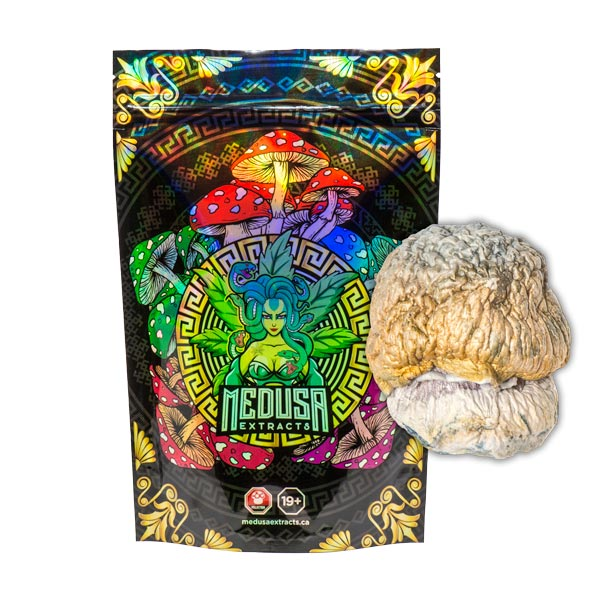 Penis Envy Dino Egg Magic Mushrooms *VERY POTENT* | Medusa Extracts